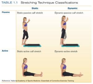 active stretching, passive stretching, stretching exercises